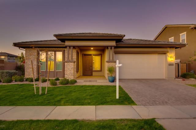 2896 E Appaloosa Road, Gilbert, AZ 85296 (MLS #5854099) :: Relevate | Phoenix