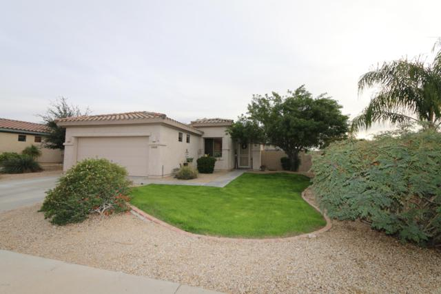 14509 W Clarendon Avenue, Goodyear, AZ 85395 (MLS #5854133) :: REMAX Professionals