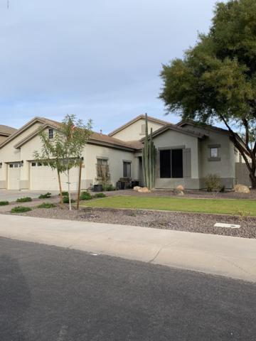 4096 E Patrick Street, Gilbert, AZ 85295 (MLS #5854162) :: Revelation Real Estate