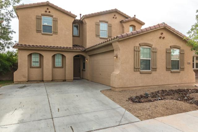 17359 W Jackson Street, Goodyear, AZ 85338 (MLS #5854268) :: The Results Group