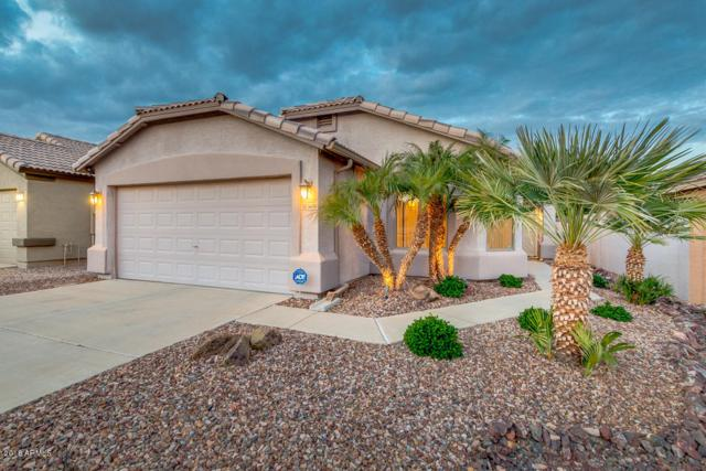 3650 W Santa Cruz Avenue, Queen Creek, AZ 85142 (MLS #5854290) :: The Everest Team at My Home Group