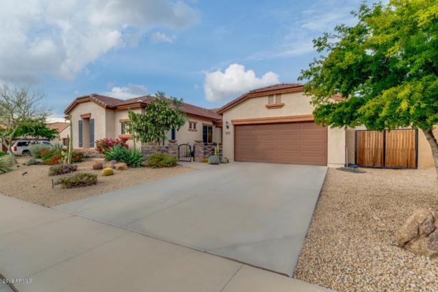 1512 W Aloe Vera Drive, Phoenix, AZ 85085 (MLS #5854386) :: The Pete Dijkstra Team