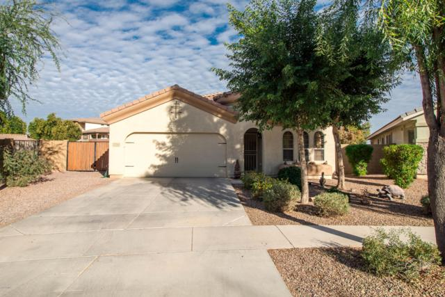 3398 S Luiseno Boulevard, Gilbert, AZ 85297 (MLS #5854459) :: Revelation Real Estate