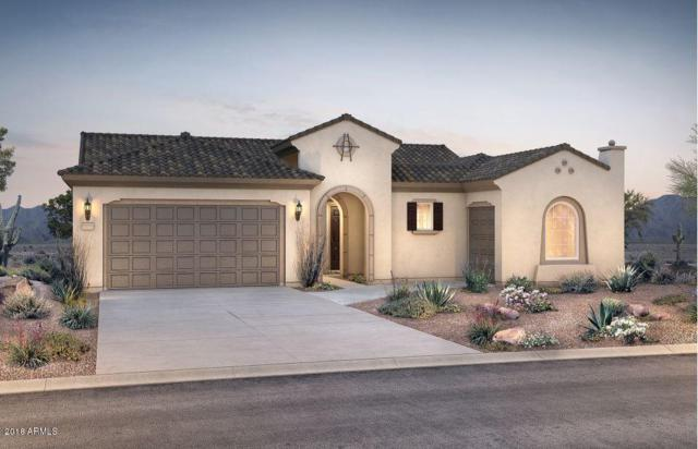 21350 N 263RD Lane, Buckeye, AZ 85396 (MLS #5854480) :: Desert Home Premier