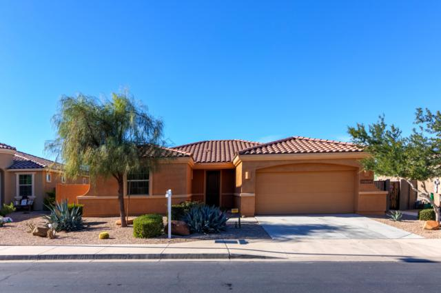 12752 S 184TH Avenue, Goodyear, AZ 85338 (MLS #5854482) :: Kortright Group - West USA Realty