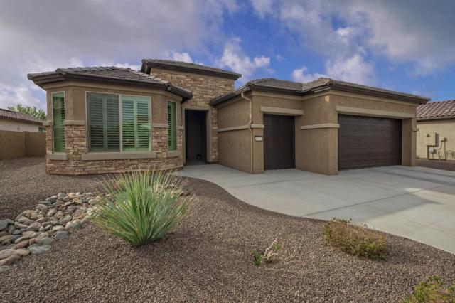 16773 W Monte Vista Road, Goodyear, AZ 85395 (MLS #5854532) :: Yost Realty Group at RE/MAX Casa Grande