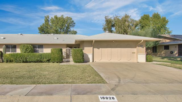 18828 N Mayan Drive, Sun City, AZ 85373 (MLS #5854608) :: The Daniel Montez Real Estate Group