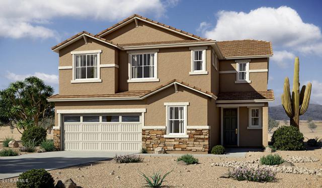 8028 W Encinas Lane, Phoenix, AZ 85043 (MLS #5854639) :: Team Wilson Real Estate