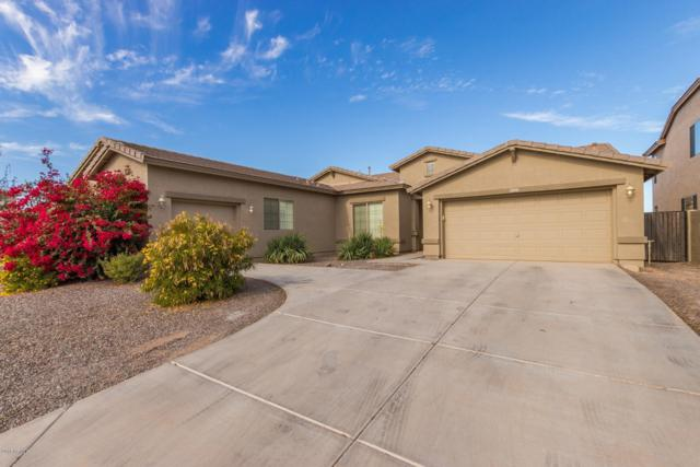 42010 W Almira Drive, Maricopa, AZ 85138 (MLS #5854691) :: Yost Realty Group at RE/MAX Casa Grande