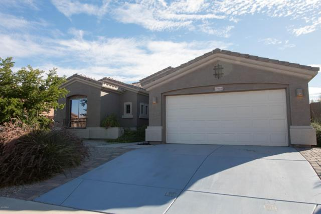 17865 W Desert View Lane, Goodyear, AZ 85338 (MLS #5854704) :: Kortright Group - West USA Realty