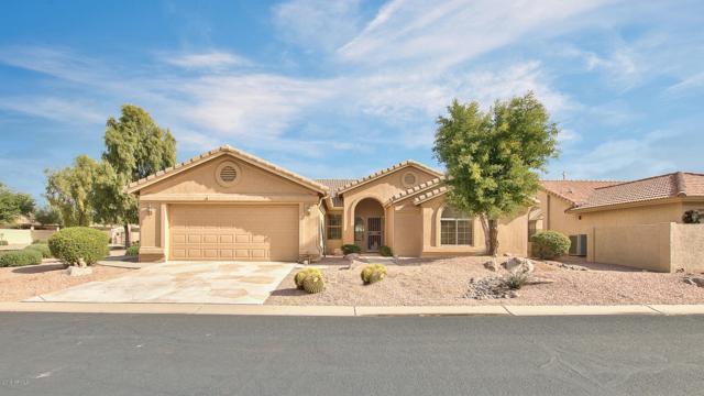 23833 S Stoney Path Drive, Sun Lakes, AZ 85248 (MLS #5854716) :: Yost Realty Group at RE/MAX Casa Grande