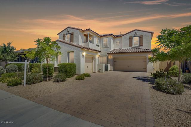 5111 N 147TH Avenue, Litchfield Park, AZ 85340 (MLS #5854831) :: Kortright Group - West USA Realty