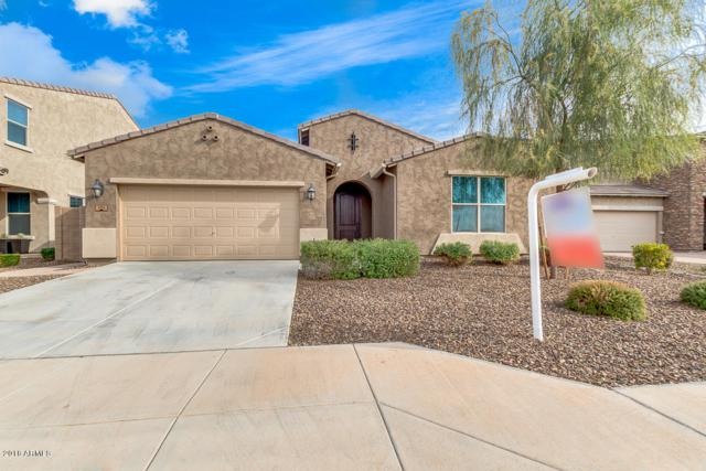 4911 S Joshua Tree Lane, Gilbert, AZ 85298 (MLS #5854849) :: Yost Realty Group at RE/MAX Casa Grande