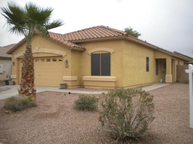 35625 N Belgian Blue Court, San Tan Valley, AZ 85143 (MLS #5854871) :: The Bill and Cindy Flowers Team