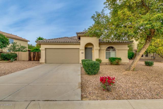 31702 N Royal Oak Way, San Tan Valley, AZ 85143 (MLS #5854892) :: Realty Executives