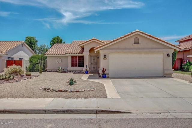 7455 W Via Montoya Drive, Glendale, AZ 85310 (MLS #5854896) :: Team Wilson Real Estate