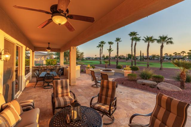 23115 N Pico Drive, Sun City West, AZ 85375 (MLS #5854902) :: Desert Home Premier