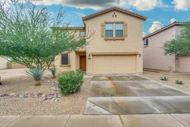 44211 W Griffis Drive, Maricopa, AZ 85138 (MLS #5854969) :: The Jesse Herfel Real Estate Group