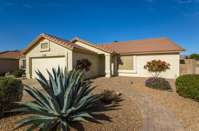 11314 E Downing Street, Mesa, AZ 85207 (MLS #5855008) :: RE/MAX Excalibur