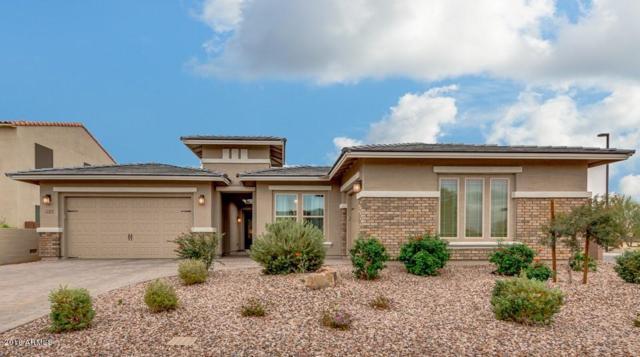 2149 E Tomahawk Drive, Gilbert, AZ 85298 (MLS #5855041) :: The W Group