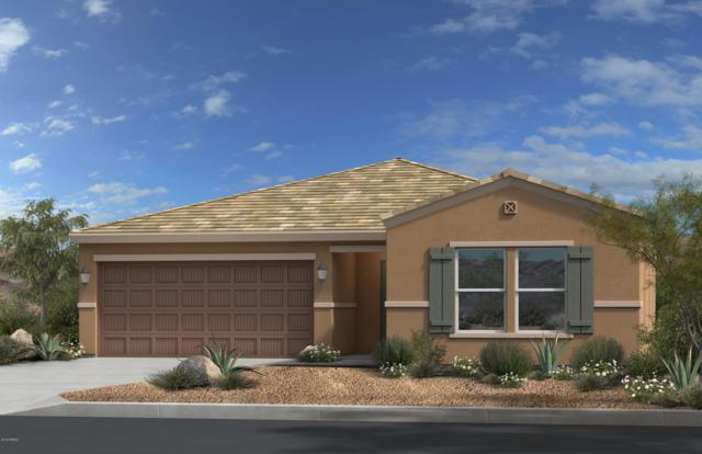 7778 S Agassiz Peak Court, Gold Canyon, AZ 85118 (MLS #5855058) :: Realty Executives