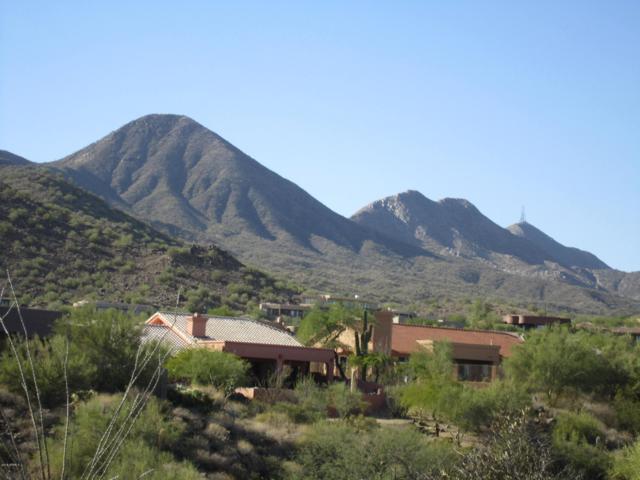 15214 N Elena Drive, Fountain Hills, AZ 85268 (MLS #5855074) :: Door Number 2