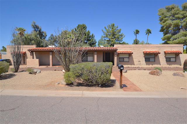 5960 E Pershing Avenue, Scottsdale, AZ 85254 (MLS #5855130) :: The Pete Dijkstra Team