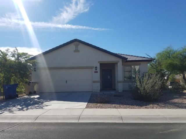 24525 W Gregory Road, Buckeye, AZ 85326 (MLS #5855160) :: Arizona 1 Real Estate Team