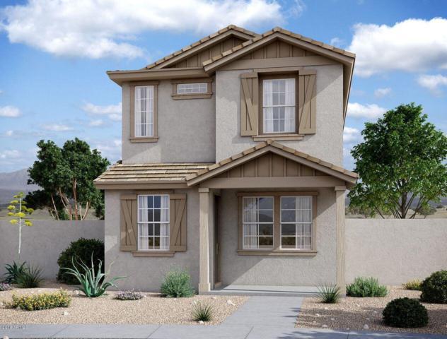 4563 S Montana Drive, Chandler, AZ 85248 (MLS #5855182) :: The Daniel Montez Real Estate Group
