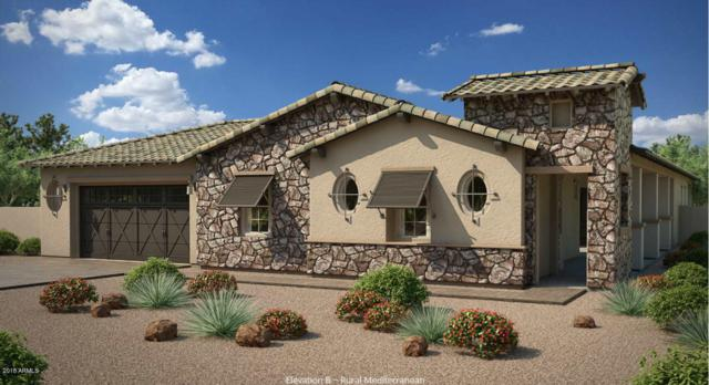880 E Peach Tree Place, Chandler, AZ 85249 (MLS #5855200) :: Conway Real Estate