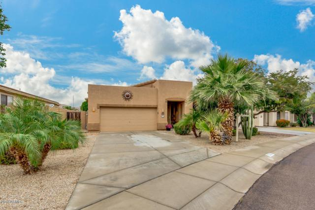 3302 N 126TH Drive, Avondale, AZ 85392 (MLS #5855204) :: Team Wilson Real Estate