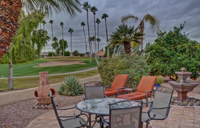 9709 W Marco Polo Road, Peoria, AZ 85382 (MLS #5855299) :: Arizona Best Real Estate
