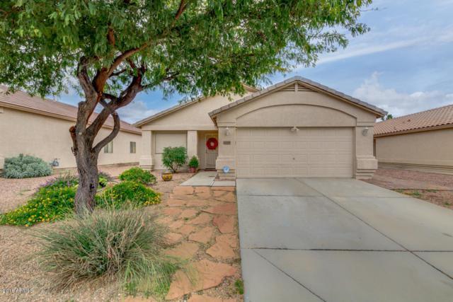16349 N 138TH Avenue, Surprise, AZ 85374 (MLS #5855406) :: Arizona Best Real Estate