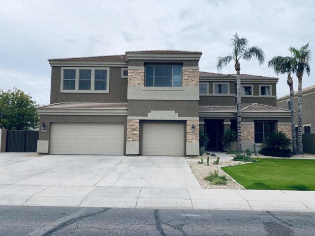 1751 E Woodsman Place, Chandler, AZ 85286 (MLS #5855418) :: Arizona Best Real Estate