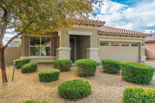 15045 W Glenrosa Avenue, Goodyear, AZ 85395 (MLS #5855445) :: The Pete Dijkstra Team