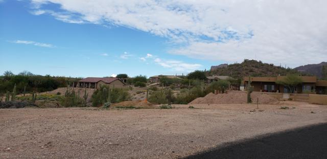 3650 S Kings Ranch Court, Gold Canyon, AZ 85118 (MLS #5855484) :: Yost Realty Group at RE/MAX Casa Grande