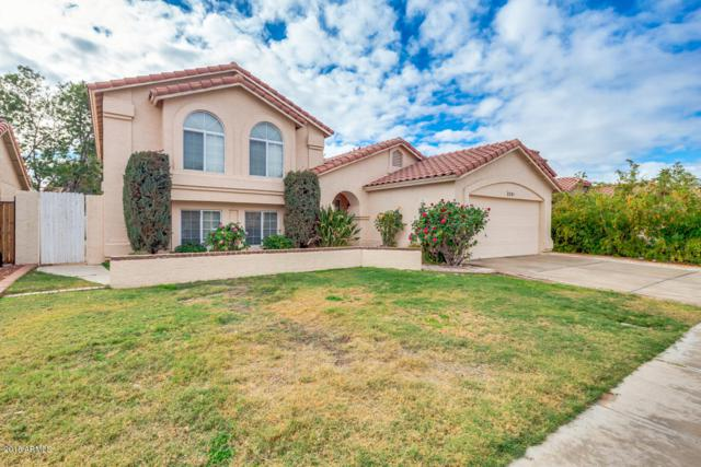 3201 W Frankfurt Drive, Chandler, AZ 85226 (MLS #5855486) :: The Bill and Cindy Flowers Team