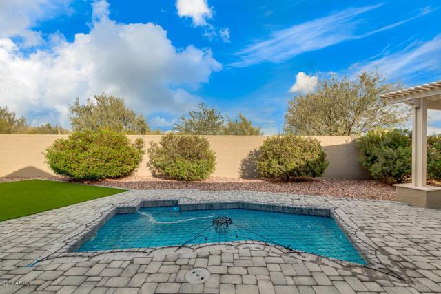40701 N Laurel Valley Way, Anthem, AZ 85086 (MLS #5855492) :: Desert Home Premier