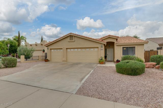 21409 E Via Del Palo Street, Queen Creek, AZ 85142 (MLS #5855557) :: The Bill and Cindy Flowers Team