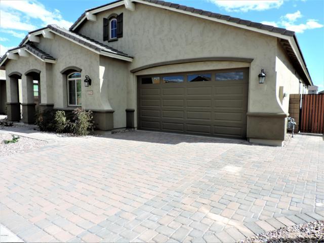 20281 E Raven Drive, Queen Creek, AZ 85142 (MLS #5855595) :: Realty Executives