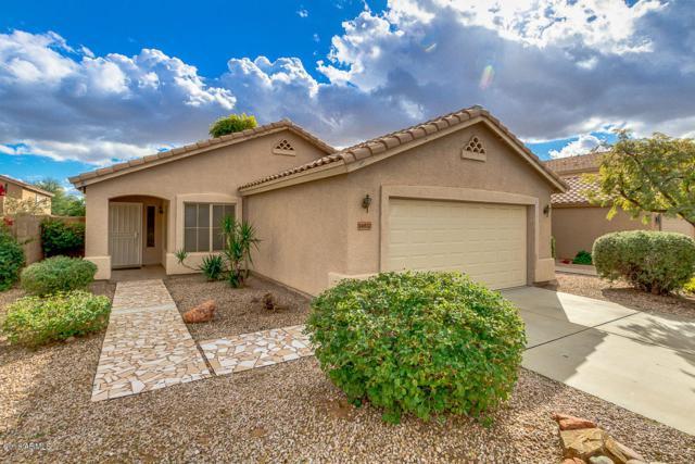 14827 W Lamoille Drive, Surprise, AZ 85374 (MLS #5855598) :: Arizona Best Real Estate