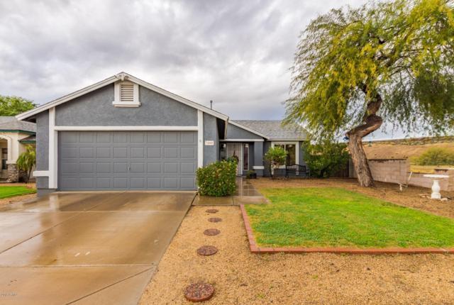 3602 W Firehawk Drive, Glendale, AZ 85308 (MLS #5855624) :: Arizona Best Real Estate