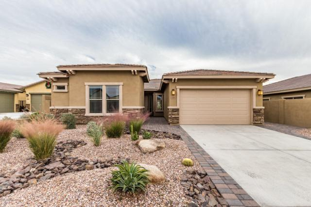 12007 S 182ND Avenue, Goodyear, AZ 85338 (MLS #5855625) :: The Bill and Cindy Flowers Team