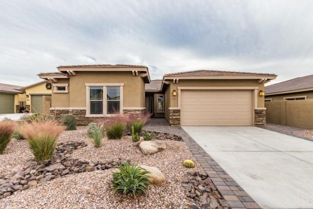 12007 S 182ND Avenue, Goodyear, AZ 85338 (MLS #5855625) :: The Daniel Montez Real Estate Group
