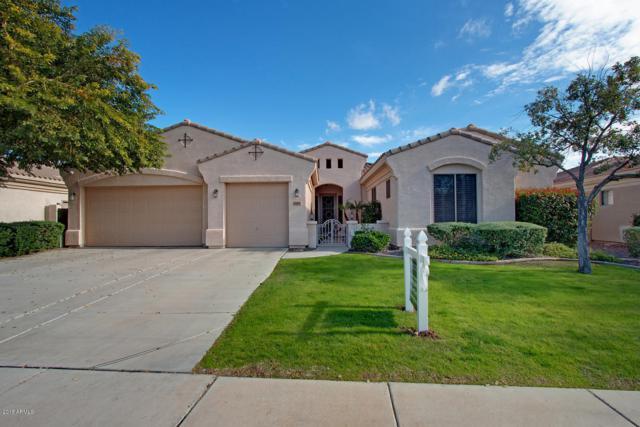 14103 N 90TH Lane, Peoria, AZ 85381 (MLS #5855631) :: Arizona Best Real Estate