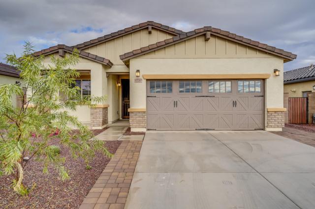 17126 W Seldon Lane, Waddell, AZ 85355 (MLS #5855637) :: Kortright Group - West USA Realty
