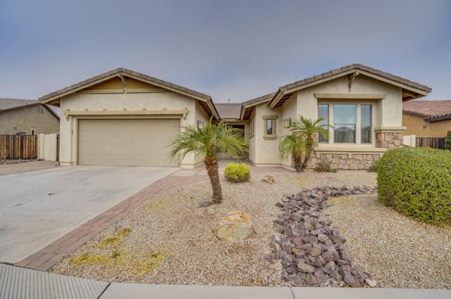 1908 W Macaw Drive, Chandler, AZ 85286 (MLS #5855691) :: The Bill and Cindy Flowers Team