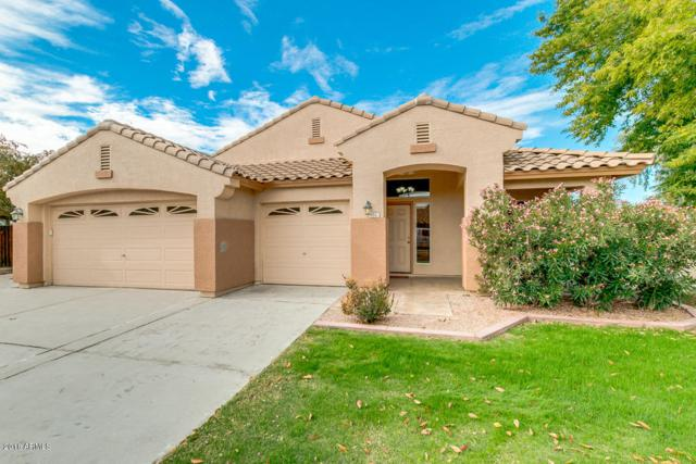 812 N John Way, Chandler, AZ 85225 (MLS #5855704) :: Relevate | Phoenix