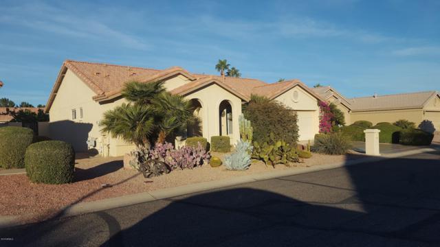15764 W Piccadilly Road, Goodyear, AZ 85395 (MLS #5855715) :: Desert Home Premier