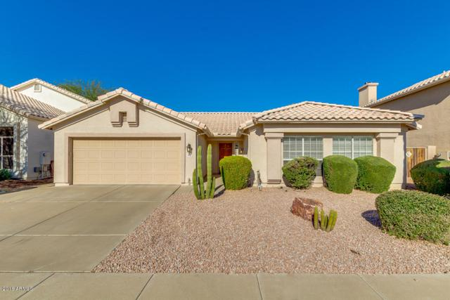 3332 E Tonto Lane, Phoenix, AZ 85050 (MLS #5855720) :: Lux Home Group at  Keller Williams Realty Phoenix